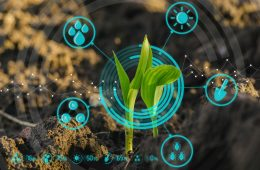 smart-agriculture